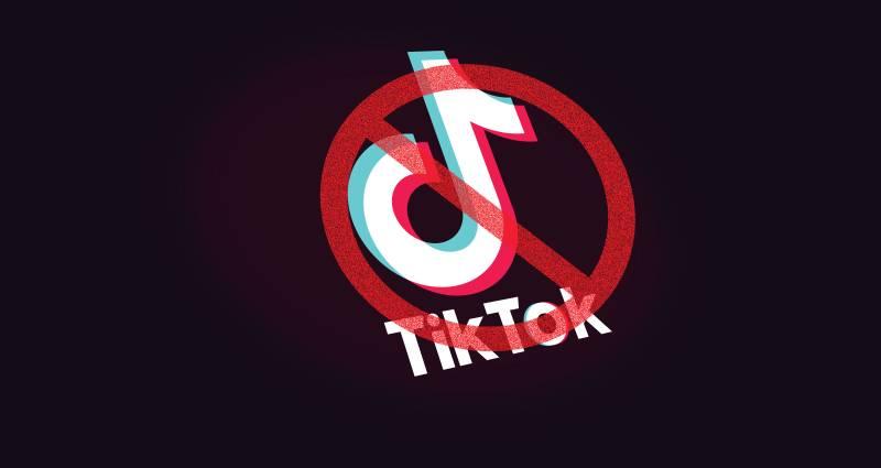TikTok ban divides social media in Pakistan