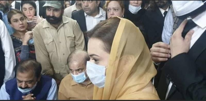 Shehbaz Sharif remanded till Oct 20 in money laundering case