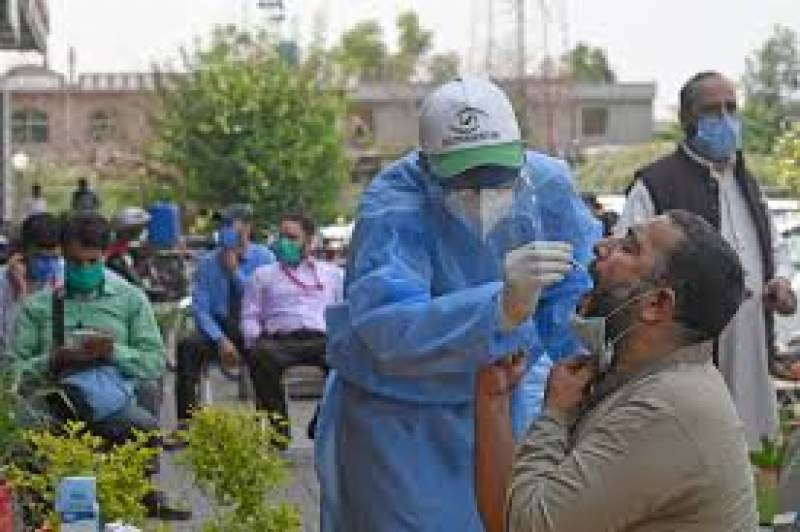 Pakistan records 615 new COVID-19 cases, 14 deaths in past 24 hours