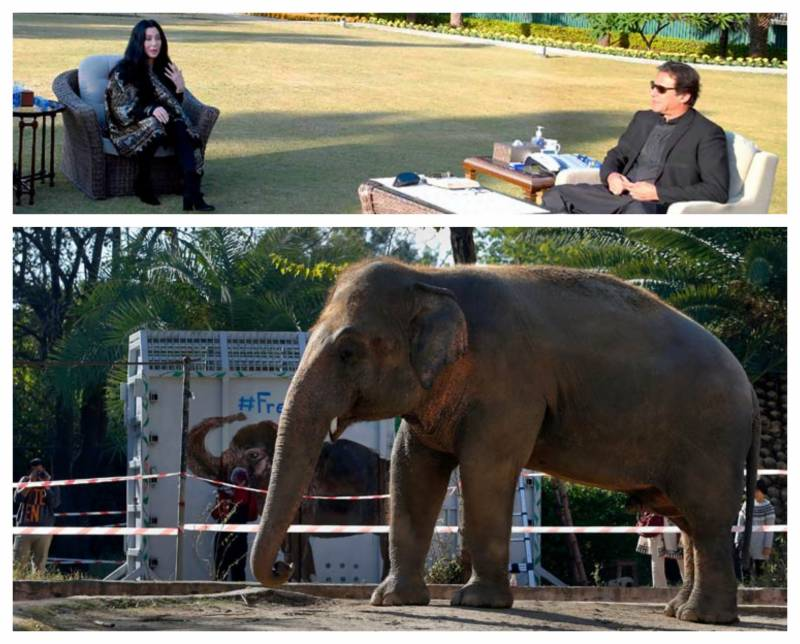 'Goddess of Pop' in Pakistan to see off 'world's loneliest elephant' (VIDEO)