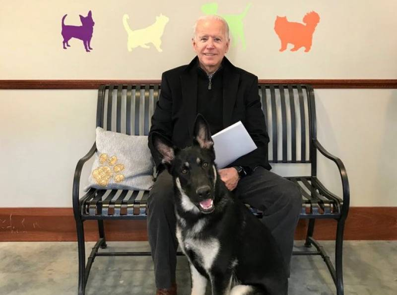Biden fractures foot while playing with dog