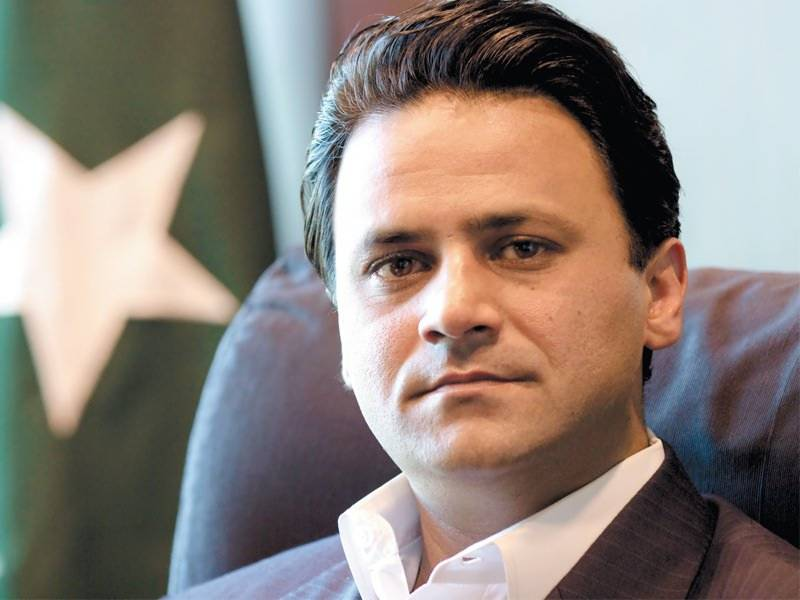PM's aide on power Tabish Gauhar resigns