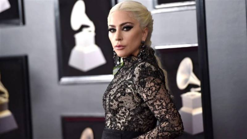 Lady Gaga's French dogs returned unharmed