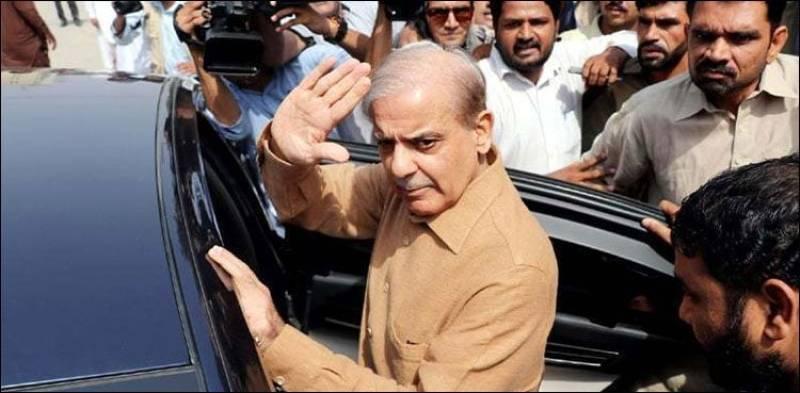 LHC accepts bail petition of Shehbaz Sharif