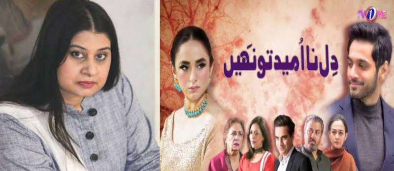 Amna Mufti opens up about her meeting with PM Imran Khan