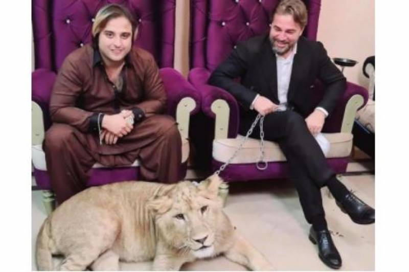 Kashif Zameer who hosted 'Ertugrul' to Pakistan seen beating pet lion in viral video