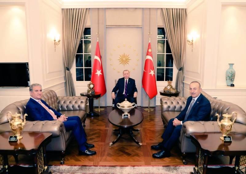 FM Qureshi, Turkish President Erdoğan discuss Israel's atrocities in Palestine