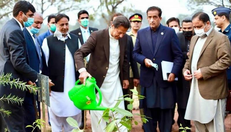 PM Imran hails 'historic' budget to beat climate change, reverse effects