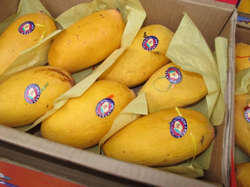 Pakistani mangoes hit Singapore markets