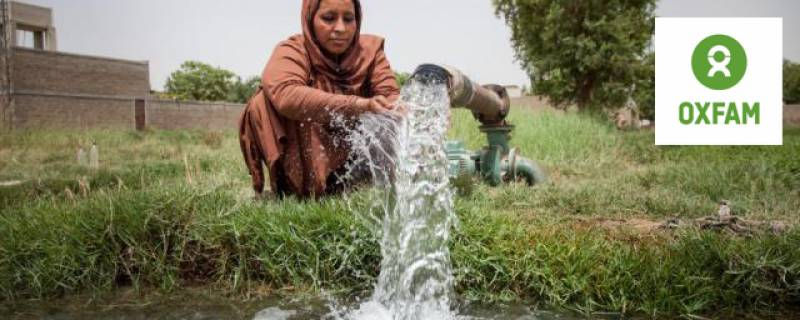 Inequality in the Food System: Living Income Gap in Pakistan's Rice Value Chain