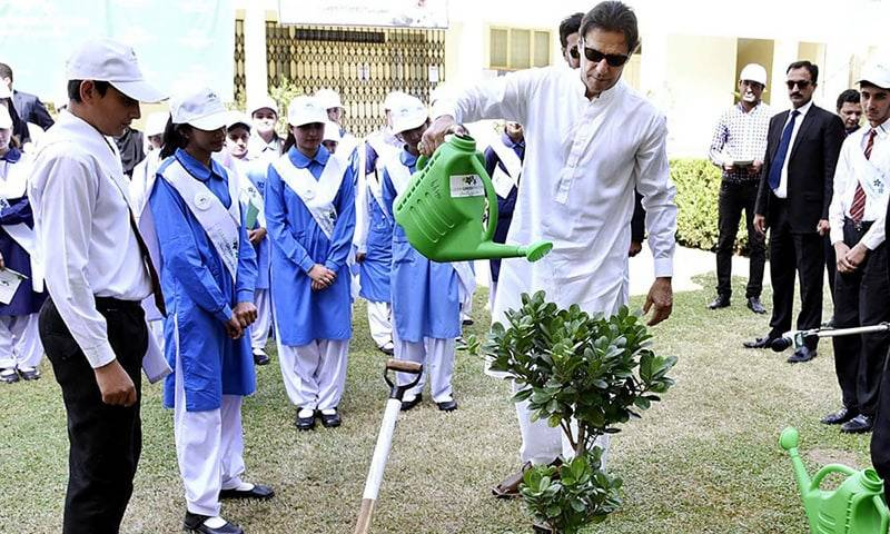 Pakistan gears up for biggest ever tree plantation drive
