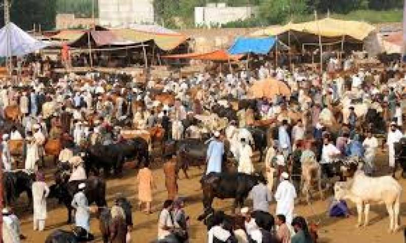 COVID-19: Pakistan issues guidelines for Eidul Adha