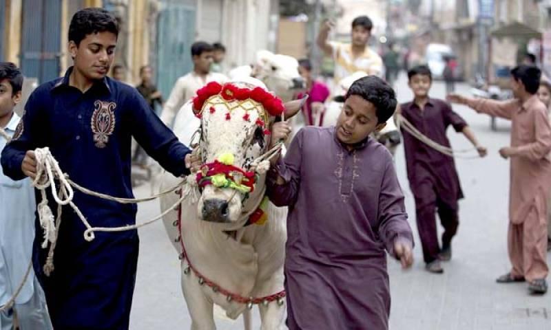 Nation celebrates Eidul-Adha overshadowed by COVID pandemic