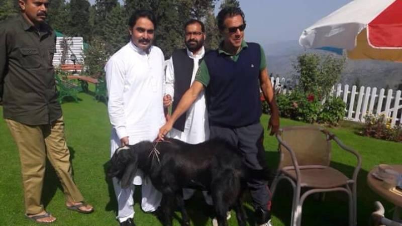 PM Imran celebrates Eid with family in Nathiagali