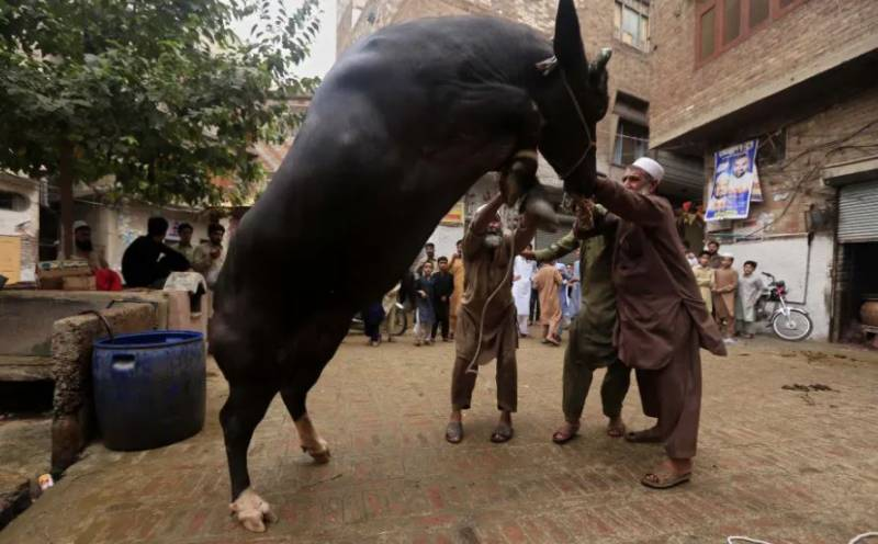 Nation celebrates second day of Eidul-Adha with religious fervor