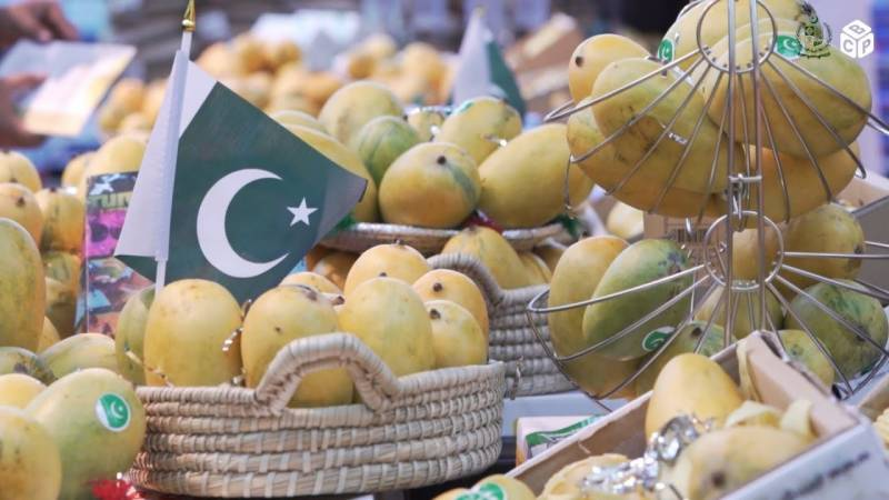 In a first, Pakistani mangoes reach Russia via road