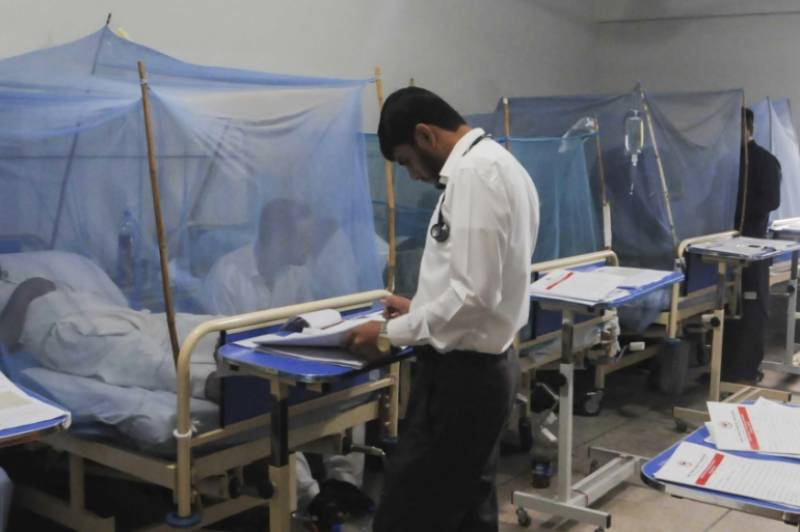 Hundreds of dengue cases reported amid recent outbreak in Punjab, KPK