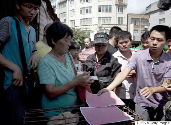 This picture taken on June 20, 2015 shows animal-loving Yang Xiaoyun (2nd-L) going around buying some 100 dogs at a market in Yulin, in southern China's Guangxi province. Yang has paid more than 1,000 USD to prevent around 100 canines from being eaten ahead of a dog meat festival which has provoked outrage worldwide. CHINA OUT AFP PHOTO (Photo credit should read STR/AFP/Getty Images)