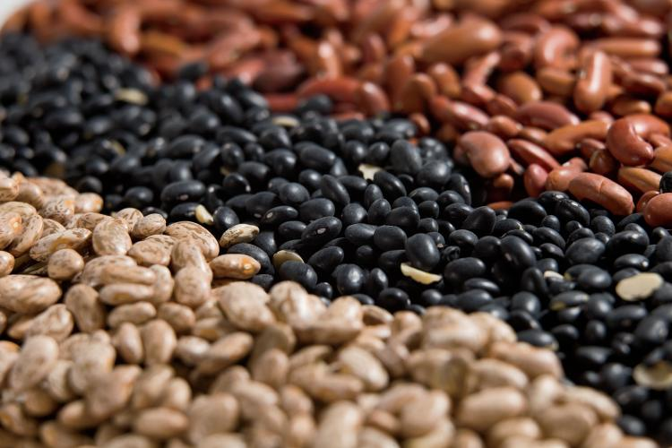 Beans. Navy, Pinto, Black, Light Red Kidney, Garbanzo and Great Northern.